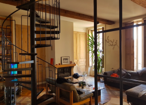 achat studio lyon-séjour meublé cheminée escalier parquet
